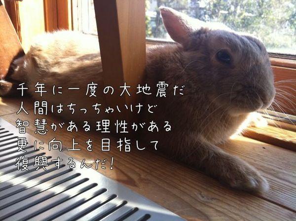 写真 (1).jpg